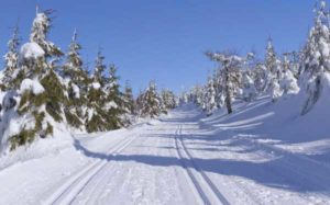 Nordic Ski Trails in the Adirondacks